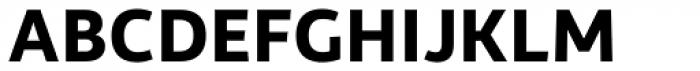Rehn Bold Font UPPERCASE