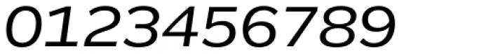 Remora Corp W4 Medium Italic Font OTHER CHARS