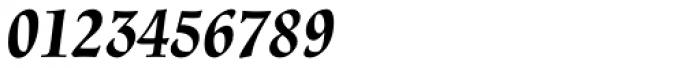 Renner Antiqua Pro Bold Italic Font OTHER CHARS