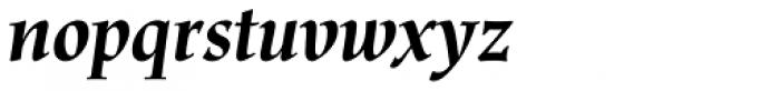 Renner Antiqua Pro Bold Italic Font LOWERCASE