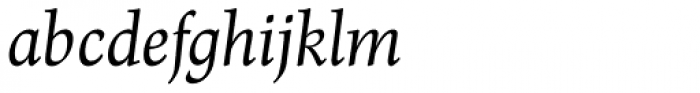 Renner Antiqua Pro Italic Font LOWERCASE