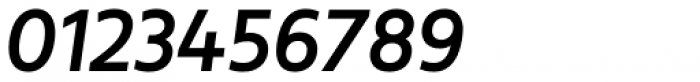 Revisal Medium Italic Font OTHER CHARS