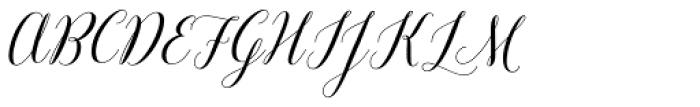 Revista Script Bold Font UPPERCASE