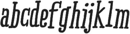RidemyBike Serif Pro otf (700) Font LOWERCASE