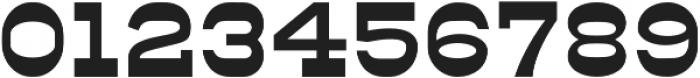 Ripshot Slab Regular otf (400) Font OTHER CHARS