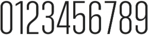 Ristretto Pro Light otf (300) Font OTHER CHARS