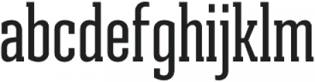 Ristretto Slab Pro Medium otf (500) Font LOWERCASE