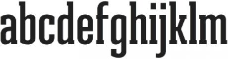Ristretto Slab Pro SemiBold otf (600) Font LOWERCASE