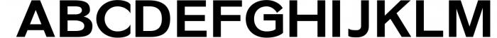 Ripple- Classic Sans Serif Font UPPERCASE