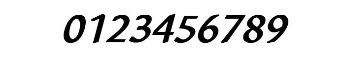 Richa Bold Italic Font OTHER CHARS