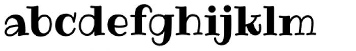 Ribeye Pro Font LOWERCASE