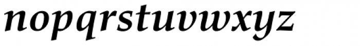 Richler Cyrillic Bold Italic Font LOWERCASE