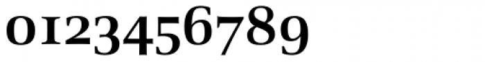 Richler Cyrillic Bold Font OTHER CHARS