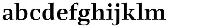 Richler Cyrillic Bold Font LOWERCASE