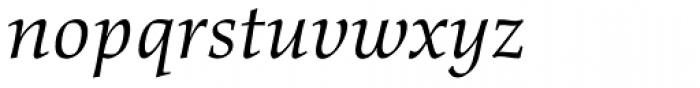 Richler Greek Italic Font LOWERCASE