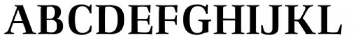 Richler Pro Bold Font UPPERCASE