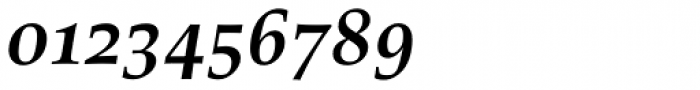 Richler Pro Cyrillic Bold Italic Font OTHER CHARS