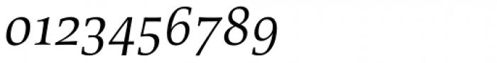 Richler Pro Cyrillic Italic Font OTHER CHARS