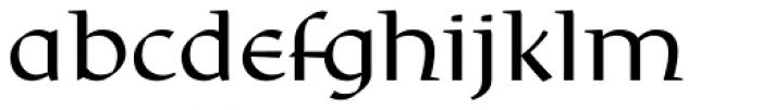 Rieven Uncial Pro Font LOWERCASE