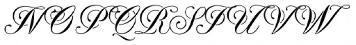 Rijk Font UPPERCASE