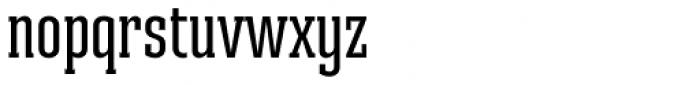 Ristretto Slab Pro Medium Font LOWERCASE