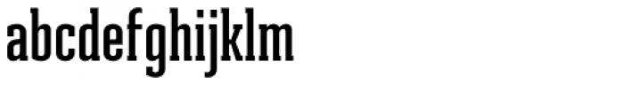 Ristretto Slab Pro SemiBold Font LOWERCASE