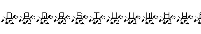 RMFido Font LOWERCASE