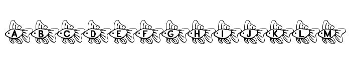 RMFish2 Font LOWERCASE