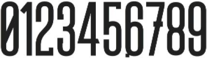 Robusto Black ttf (900) Font OTHER CHARS