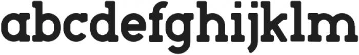 Roger Serif Bold otf (700) Font LOWERCASE