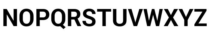 Roberto Sans Bold Font UPPERCASE