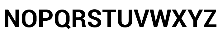 Roboto Bold Font UPPERCASE