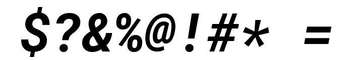 Roboto Mono Bold Italic Font OTHER CHARS