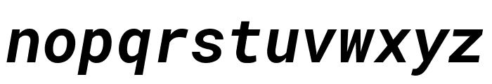 Roboto Mono Bold Italic Font LOWERCASE
