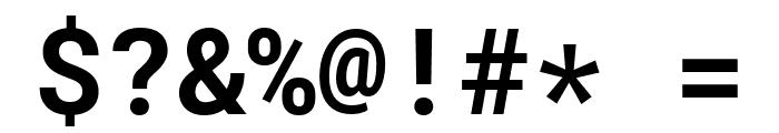 Roboto Mono Bold Font OTHER CHARS
