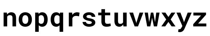 Roboto Mono Bold Font LOWERCASE