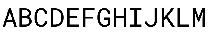 Roboto Mono Font UPPERCASE