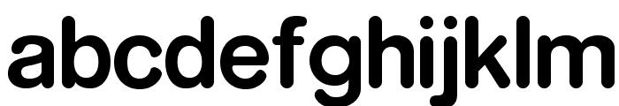 RockoFLF-Bold Font LOWERCASE