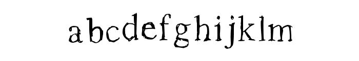 Roman New Times Medium Font LOWERCASE