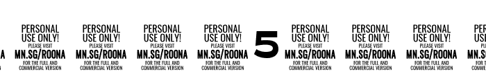 Roona Sans Black PERSONAL Font OTHER CHARS