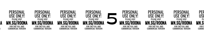 Roona Sans Bold PERSONAL Font OTHER CHARS