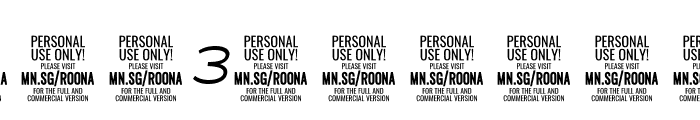 Roona Sans Light PERSONAL Italic Font OTHER CHARS