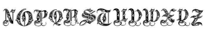 Royal Initialen Font UPPERCASE