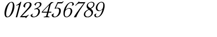Rowan Oak NF Italic Font OTHER CHARS