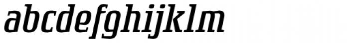 Rogue Serif Light Italic Font LOWERCASE