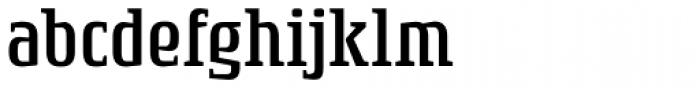 Rogue Serif Light Font LOWERCASE