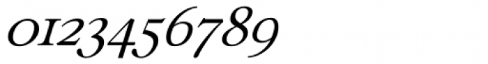 Ronaldson Italic Fractions Font OTHER CHARS