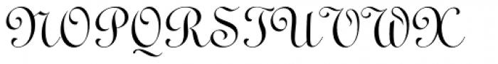 Ronde Script Font UPPERCASE
