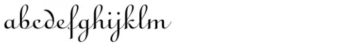Ronde Script Font LOWERCASE