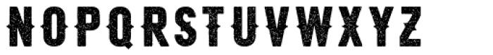 Roper Press Light Font LOWERCASE